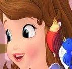 Princesa Sofia números ocultos