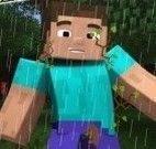 Minecraft banho