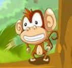 Monkey in Trouble