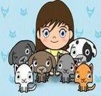 Cuidar dos animais na Clínica Veterninária