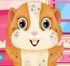 Hamster no salão de beleza