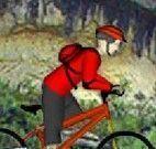 Bicicleta na floresta