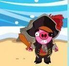 Bombas porcos pirata