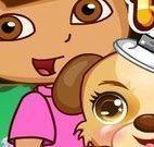 Dora cuidar do cachorro