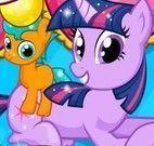 Nascimentos dos gêmeos My Little Pony