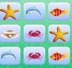 Trincas bichos do mar