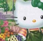 Colorir Hello Kitty no jardim