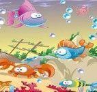 Diferenças dos aquários