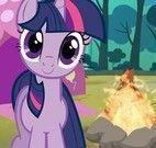 Acampar com My little Pony