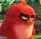 Angry Birds achar bichinhos
