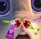 Judy cuidar do nariz
