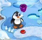 Cuidar dos pinguins no zoológico