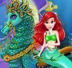 Pequena Sereia e o cavalo marinho