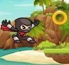 Ninja aventuras