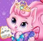 Bichinhos das princesas cuidar
