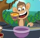 Macaco na cozinha fazendo sorvete