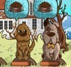 Restaurante de cachorro