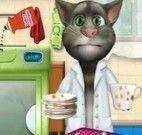 Tom gatinho lavar louças
