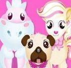 Cuidar dos animais no pet shop