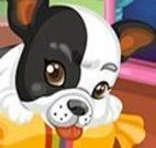Colorir desenho de cachorros