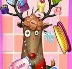 Rudolph no banho