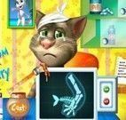 Gato Tom virtual cirurgia