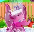 Banho do elefante