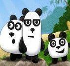 Aventura com os 3 Pandas