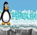 Aventura do Pinguim