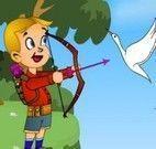 Atirar flechas nos pássaros