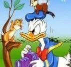 Pato Donald diferenças