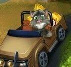Gato Tom transportar ouro