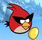 Angry Birds ovos de ouro
