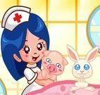 Hospital dos animais