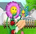 Cuidar das flores da Elsa bebê