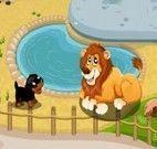 Cachorrinhos no zoológico