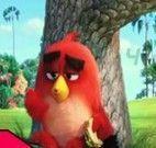 Angry Birds números escondidos