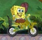 Corrida de moto do bob esponja