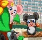 Cuidar de Ratos na gaiola