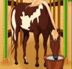 Cuidar do cavalo na fazenda