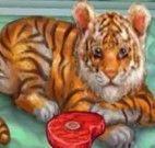 Cuidar do Pequeno Tigre