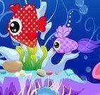 Decorar aquário de peixes