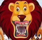 Dentista de animais