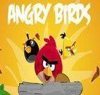 Dirigir carros com os Angry Birds