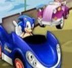 Corrida de carro do sonic