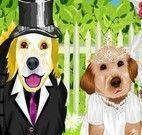 Cachorros noivos