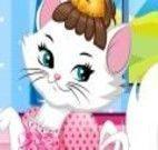 Vestir a gatinha charmosa