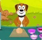 Fazer pizza com o cachorro