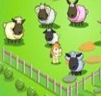 Jogo de ovelhas