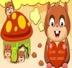 Jogos Hamster